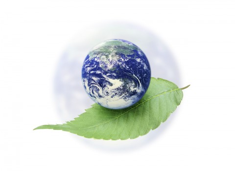 Earth Resting Atop a Leaf --- Image by © Royalty-Free/Corbis